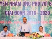 Tay Nguyen : mobiliser les synergies pour le développement durable des forêts