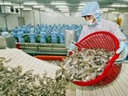 Brexit : tendance à la baisse des exportations de crevettes du Vietnam