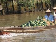 Fête touristique du marché flottant de Cai Rang
