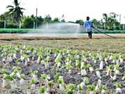 927 milliards de dongs mobilisés pour le bien-être social dans le Delta du Mékong