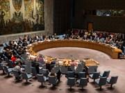 La Malaisie assume la présidence tournante du Conseil de sécurité de l'ONU