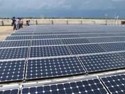 Terra Wood prévoit d'investir 400 millions de dollars à Quang Ngai