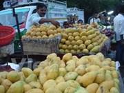 Les Etats-Unis vont autoriser l'importation de mangues du Vietnam