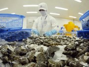 Les exportations de crevettes devraient dépasser les 3 milliards de dollars cette année
