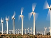 Les énergies renouvelables, gage de la sécurité énergétique