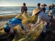 Les pêcheurs seront indemnisés dans plus d'un mois