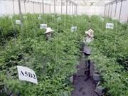 Le Vietnam appelle à l'investissement japonais dans le secteur agricole