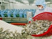 Les USA maintiennent les droits sur les crevettes congelées vietnamiennes