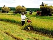 BM: L'économie vietnamienne reste stable malgré l'évolution mondiale