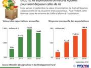 Les exportations de fruits et légumes  pourraient dépasser celles de riz