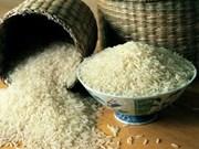 La Thaïlande octroie une subvention d'un milliard de dollars pour soutenir les riziculteurs