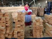 """Le """"bois légal"""" peut rentrer sur le marché européen"""