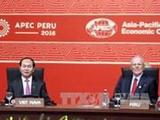Clôture du 24e Sommet de l'APEC