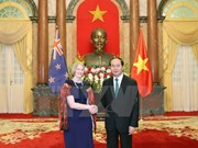 Le président vietnamien reçoit de nouveaux ambassadeurs