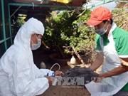 Le Vietnam renforce le contrôle des épidémies en 2017
