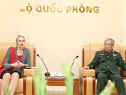 Vietnam-Pays-Bas : coopération dans le maintien de la paix