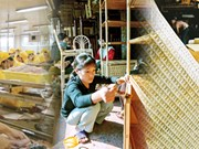 L'APEC s'intéresse au développement des micros, petites et  moyennes entreprises