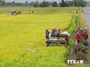 Le Vietnam conjugue les efforts pour s'adapter aux changements climatiques