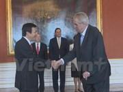 L'ambassadeur du Vietnam en R. tchèque présente ses lettres de créance