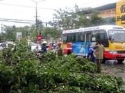 Une saison des typhons 2017 capricieuse