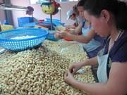Exportation de plus de 188.000 tonnes de noix de cajou en 7 mois
