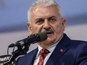 Développement de la coopération multiforme Vietnam-Turquie