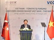Forum d'affaires Vietnam-Turquie