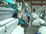 Le Vietnam, 1er importateur de coton américain