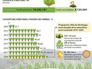 Vietnam: objectif de porter la couverture forestière à 42%