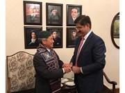 Vietnam - Pakistan : Divers potentiels dans les relations économiques