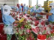Des pitayas vietnamiens vendus en Australie
