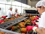 2,64 milliards de dollars d'exportations pour les fruits et légumes