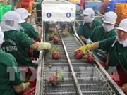 Fruits et légumes : colloque pour augmenter les exportations en UE