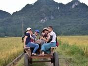 Nghê An : le village de Nua développe le tourisme communautaire