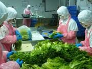 Elever la capacité logistique pour le développement du secteur des fruits et légumes