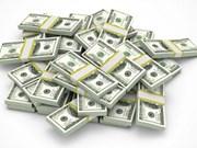 Hô Chi Minh-Ville : 5,2 milliards de dollars des devises transférées en 2017