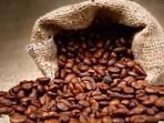 Importation de café vietnamien : l'Allemagne conserve son trône