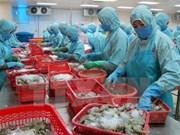 Les exportations de crevettes se sont envolées en 2017