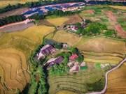 Édification d'un village culturel des Tày à Quang Ninh