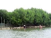 Binh Dinh investira plus d'un million de dollar dans la préservation de la biodiversité