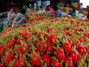 La Chine, premier partenaire commercial du Vietnam en janvier
