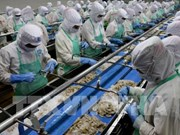 Un bon début pour les exportations des produits aquatiques