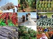 Les exportations de produits agricole, sylvicole et aquatique se chiffrent à 8,7 milliards d'USD