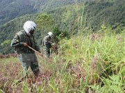 Le Vietnam fait écho à la Journée internationale pour la sensibilisation aux mines