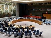 Le Vietnam, seul candidat de l'Asie-Pacifique pour un siège non permanent au Conseil de sécurité