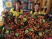 L'ambassadeur suédois apprécie la qualité des litchis de Thanh Ha