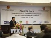 Le Mozambique apprécie l'efficacité de sa coopération avec le Vietnam dans l'agriculture