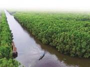 Tourisme durable au Parc national de Tràm Chim