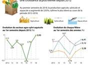 Le secteur agro-sylvi-aquacole affiche une croissance la plus élevée depuis 2012