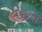 Parc national de Nui Chua : Préservation de la biodiversité  liée au tourisme durable